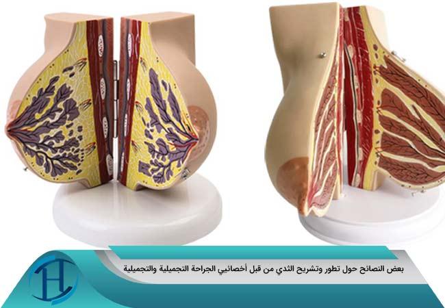 بعض النصائح حول تطور وتشريح الثدي من قبل أخصائيي الجراحة التجميلية والتجميلية